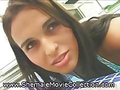 Inviting Shemale Asses! <font color=#43d0cc>21:40 мин</font>