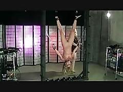 Flogged Upside Down <font color=#43d0cc>34:25 мин</font>